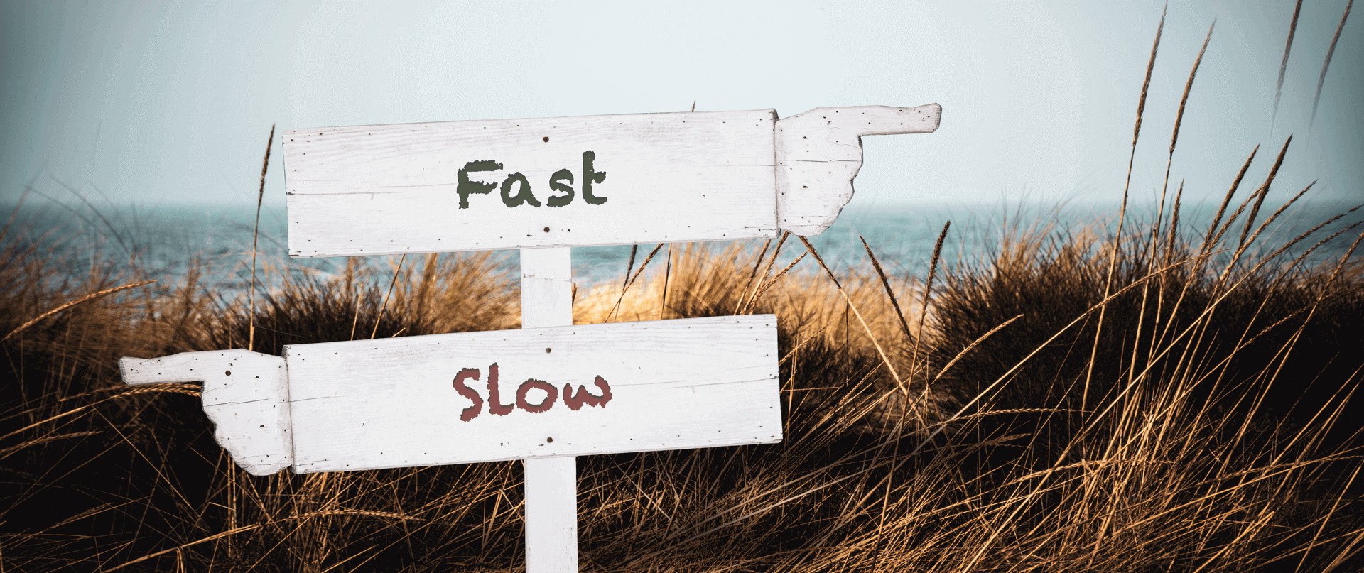 Rebrand approach - fast or slow